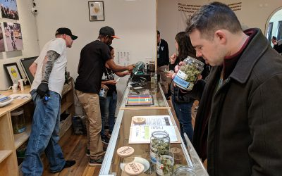 Cannabis SOPs & Compliance for Success