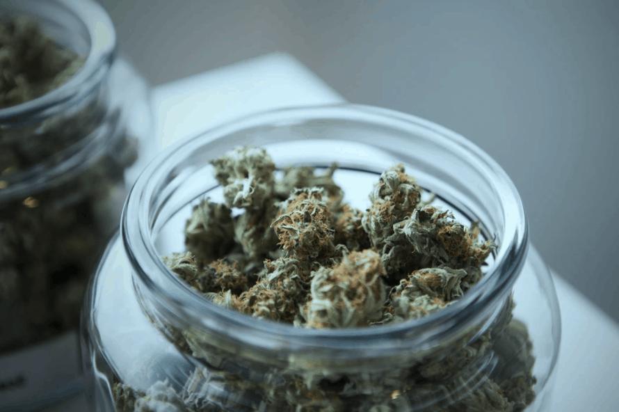cannabis financing options marijuana cbd