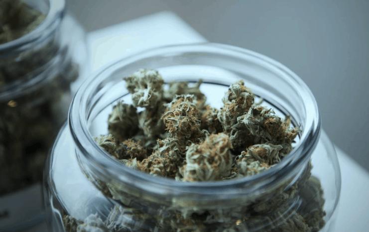 Cannabis Cultivation Facility Lenders