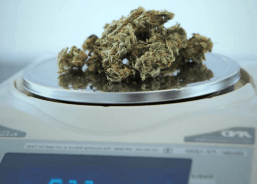 How much does it cost to open a recreational dispensary in Colorado?