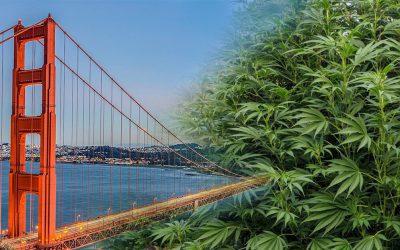 Governor Newsom's California Comeback Plan to Ease Cannabis Provisional License 'Logjam'