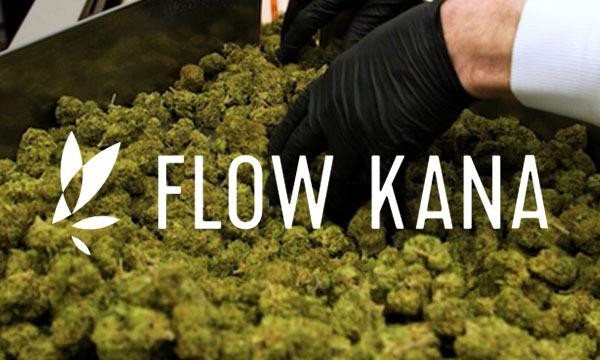 flow kana cannabis company marijuana grower network cannabis cultivators