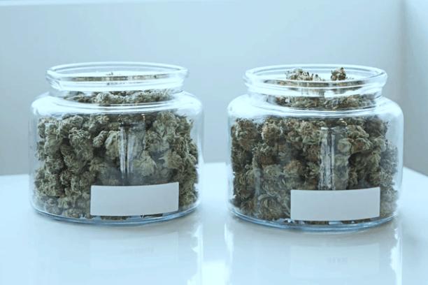Michigan Medical Dispensary & Cannabis Retail Establishment Laws