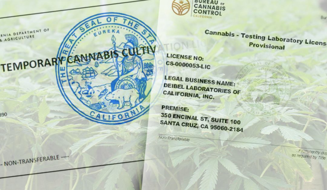 California Cannabis License Insight