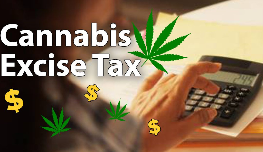 Cannabis Excise Tax: What Should You Know?