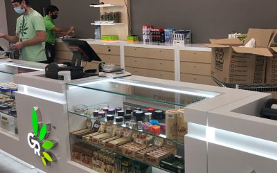 How to Open a Dispensary in New York: What Should You Know?