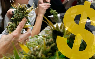An Alternative to the PPP for Cannabis