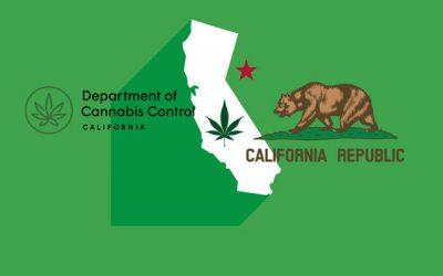 California Department of Cannabis Control Insight