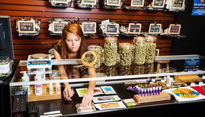 california department of cannabis control regulating dispensaries and more