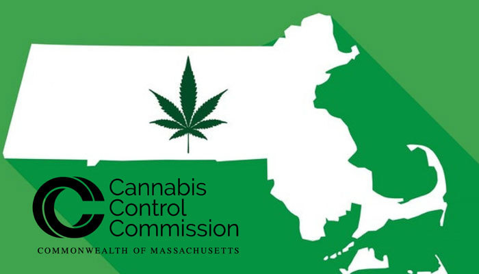 Cannabis Control Commission Insight