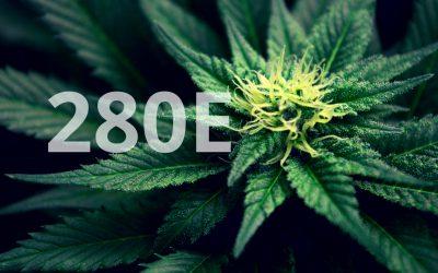 280e Tax Code Insight