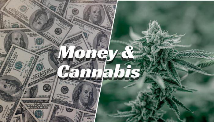 cannabis unique taxes