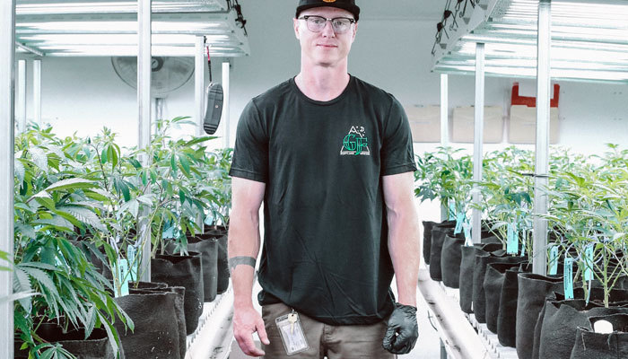 cannabis cultivator in california standing in grow room