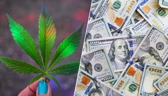 cannabis and money cannabis financing
