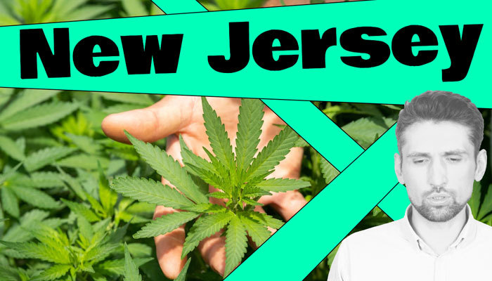 new jersey legalized cannabis opportunities
