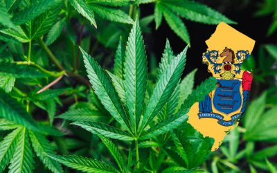 Is Marijuana Legal in New Jersey?