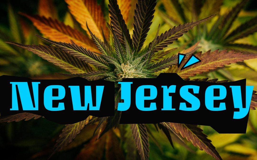New Jersey Cannabis News & Updates