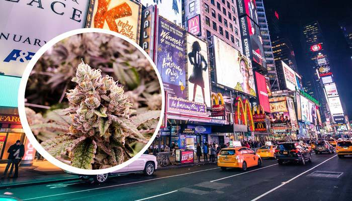 weed is legal in new york