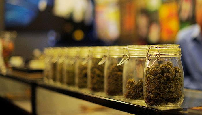 Cannabis Companies & Federal Law