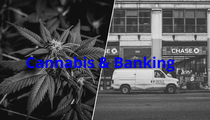 Banking Options for Cannabis Businesses