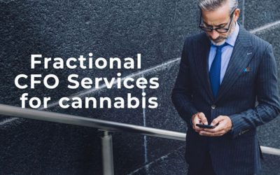 Fractional CFO Services for Cannabis