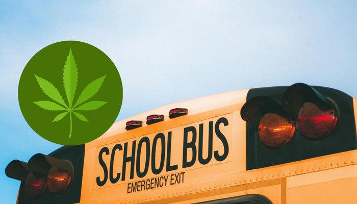Motor Vehicle Transporting Passengers/Commercial Vehicle Possessing Marijuana School Bus