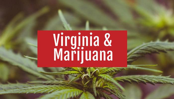 Virginia Marijuana Laws, Penalties, & Sales