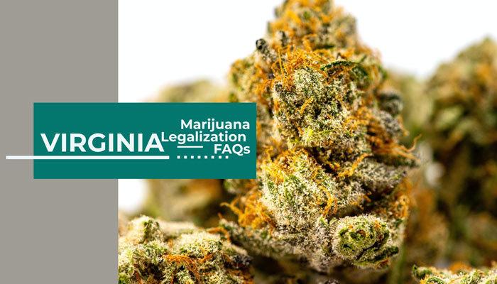 Virginia Marijuana Legalization FAQs