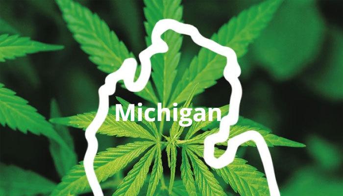 Michigan Marijuana: Everything You Need to Know